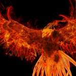 11/18 蠍座新月:無料一斉ヒーリング《不死鳥の舞》ご参加ありがとうございました。